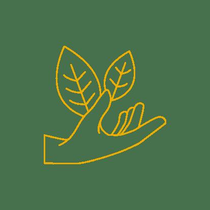 main plante - symbole de Lauréline